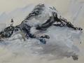 Slapende zebra - gouache - 65 x 50