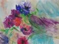 Bloemen - Anemonen 67 x 50 ipp gouache (alu lijst)
