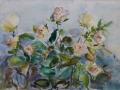 Bloemen - Gele rozen 50 x 65 ipp aquarel