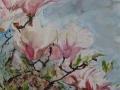 Bloemen - Magnolia 60 x 50 ipp aquarel