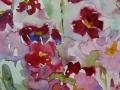 Bloemen - Primula 40 x 30 ipp gouache (alu lijst)