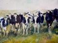 Friese Koeien olieverf - VERKOCHT