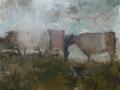 Koeien - 50 x 60 olie (alu lijst)
