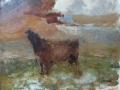 Loeiende koeien 50 x 60 oilie (metalen lijst)
