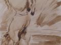Paard - sepia - ipp