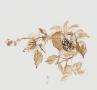 Bloemen uit de tuin II