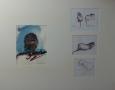 Studies in Artis - aquarel en pentekening - 65 x 50