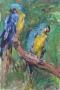 Papegaaien 60 x 50 ipp gouache