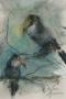 Toucans 40 x 30 ipp pastel
